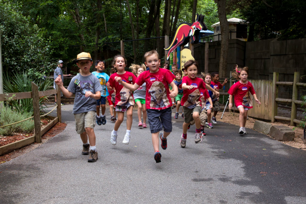 Zoo Atlanta Summer Camp