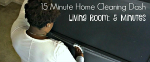 15 Minute Home Cleaning Dash with Windex®